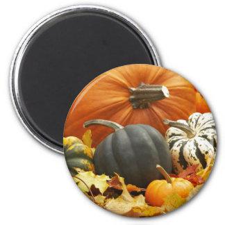 ハロウィン10月の装飾 マグネット