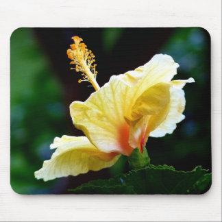 ハワイからの黄色いハイビスカス マウスパッド