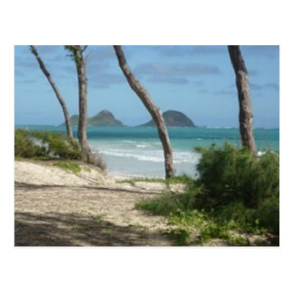 ハワイのアロハコレクション ポストカード