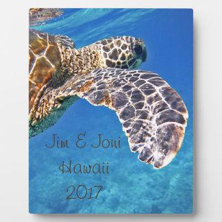 ハワイのウミガメの水泳 フォトプラーク