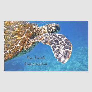 ハワイのウミガメの水泳 長方形シール