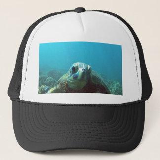 ハワイのウミガメ キャップ