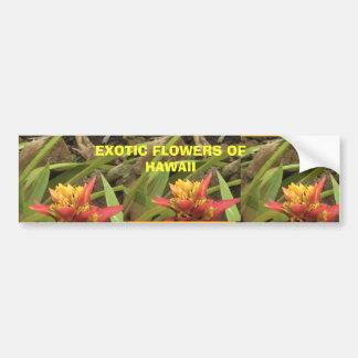 ハワイのエキゾチックな花、サンザシのエキゾチックな花… バンパーステッカー