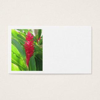 ハワイのショウガ 名刺