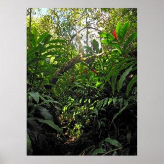 ハワイのジャングルの道 ポスター
