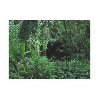 ハワイのジャングル キャンバスプリント