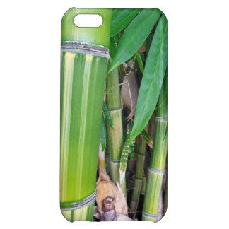 ハワイのタケ iPhone5C カバー