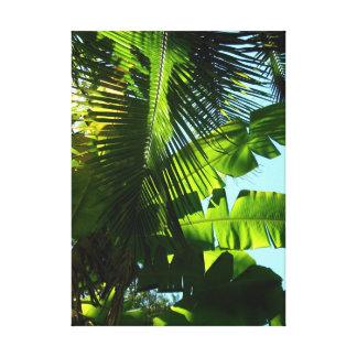 ハワイのバナナおよびココヤシの木 キャンバスプリント