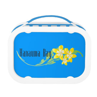ハワイのプルメリアの花 ランチボックス