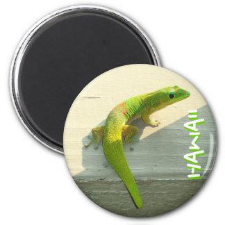 ハワイのヤモリの磁石 マグネット