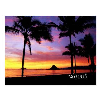 ハワイの夢の郵便はがき ポストカード