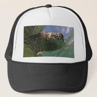 ハワイの緑のウミガメ キャップ