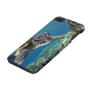 ハワイの緑のウミガメ iPod TOUCH 5G ケース