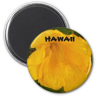 ハワイの花 マグネット