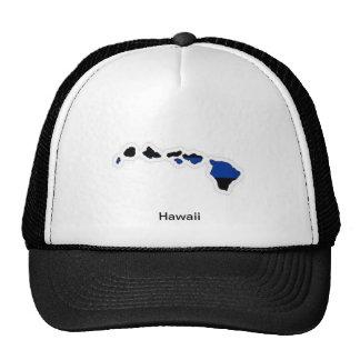 ハワイの薄いブルーライントラック運転手の帽子 メッシュ帽子