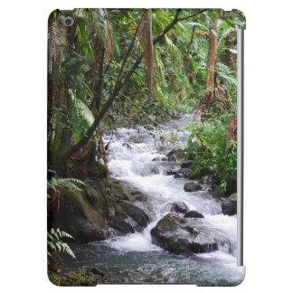 ハワイの雨林
