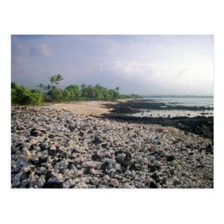 ハワイの黒い砂のビーチ ポストカード