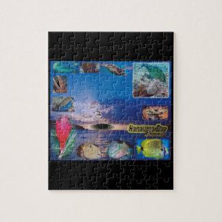 ハワイHanauma湾 ジグソーパズル