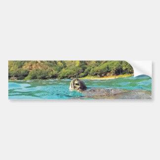 ハワイHonuのカメ バンパーステッカー