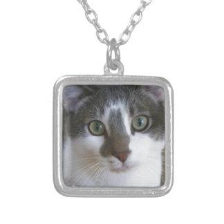 ハンサムな灰色および白い猫 シルバープレートネックレス