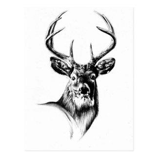 ハンドメイドの自然を引く旧式な雄鹿の芸術 ポストカード