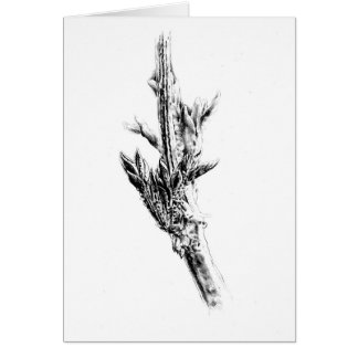 ハンドメイド花のスケッチのスケッチの芸術 カード