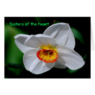 ハートの姉妹 カード