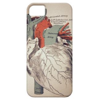 ハートのiphoneの例を持って下さい Case-Mate iPhone 5 ケース