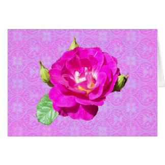 バイオレットのばら色のダマスク織 グリーティングカード