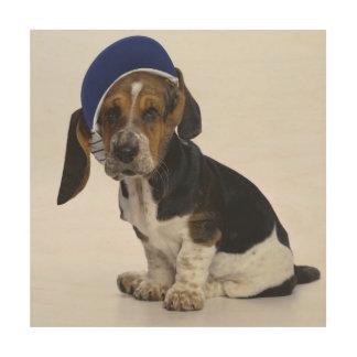 バイザーを持つバセットハウンドの子犬 ウッドウォールアート