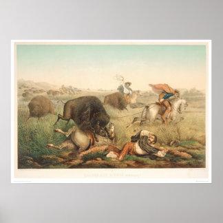 バイソンの狩り(0008A) ポスター