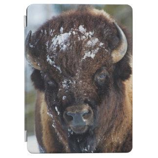 バイソンBull、冬1 iPad Air カバー