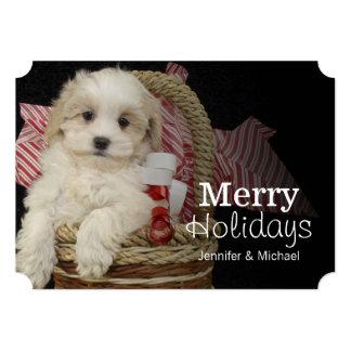 バスケットに坐っているCristmas Malti-pooの子犬 カード