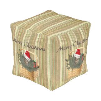 バスケットのクリスマスの休日のサンタ粋な猫 プーフ