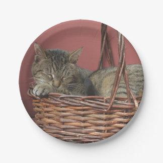 バスケットの紙皿の子猫 ペーパープレート