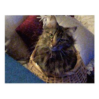バスケットの美しい虎猫のメインのあらいぐまの子猫猫 ポストカード