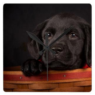 バスケットの黒いラブラドル・レトリーバー犬の子犬 スクエア壁時計