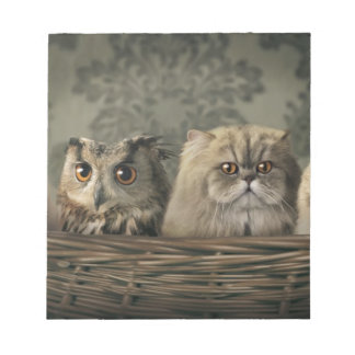 バスケットの3匹の猫そしてフクロウ ノートパッド