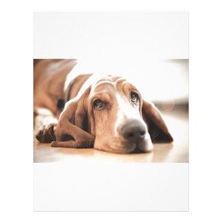 バセットの猟犬の小犬 レターヘッド