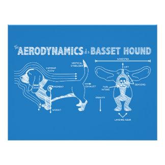 バセットハウンドの空気力学 レターヘッド
