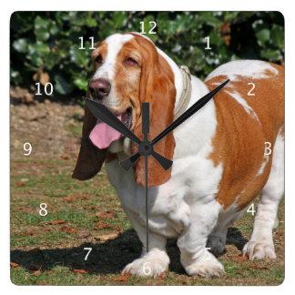 バセットハウンド犬のかわいく美しい写真 スクエア壁時計