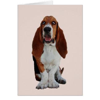 バセットハウンド犬の写真のブランクの挨拶状 カード