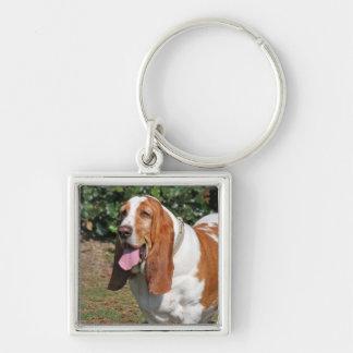 バセットハウンド犬のkeychain、キーホルダー、ギフトのアイディア キーホルダー