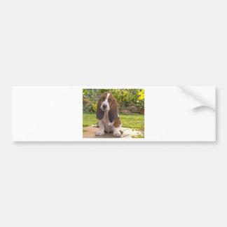 バセットハウンド犬 バンパーステッカー