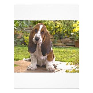 バセットハウンド犬 レターヘッド