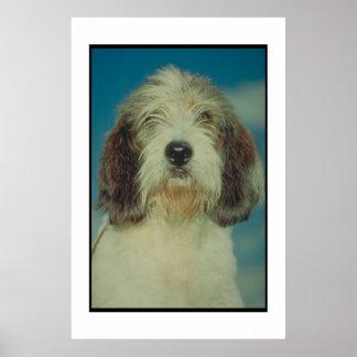 バセット犬のGriffon小さいVendeenポスター ポスター