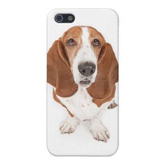 バセット犬のiPodカバー iPhone 5 Cover