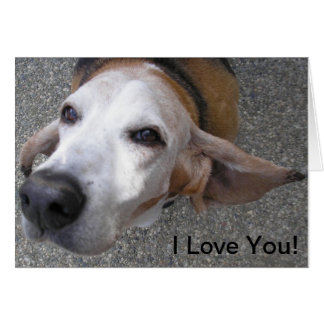 バセット犬、私は愛します! カード