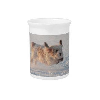 バセット犬Griffon Vendéenの壮大な小犬 ピッチャー
