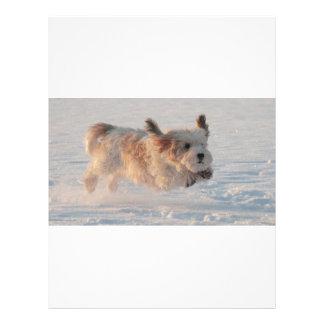 バセット犬Griffon Vendéenの壮大な小犬 レターヘッド